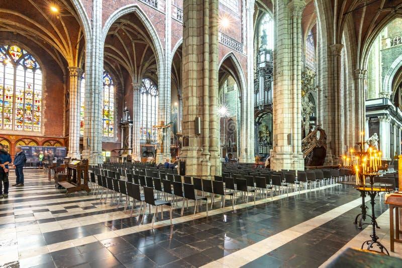 圣徒Bavo的大教堂,绅士,比利时内部  库存图片