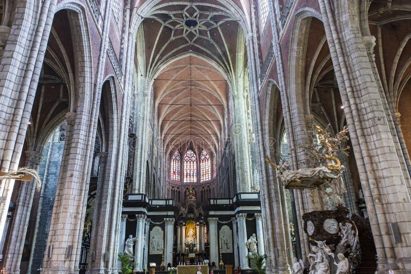 圣徒Bavon大教堂,跟特,比利时内部  库存照片