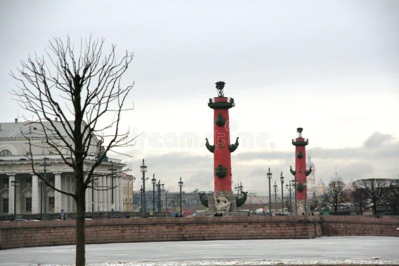 圣徒Petetsburg与冰冷的内娃河、专栏和树的冬天风景 免版税库存图片
