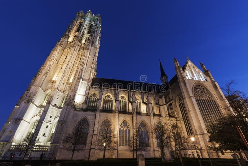 圣徒Rumbold的大教堂在梅赫伦 免版税库存图片