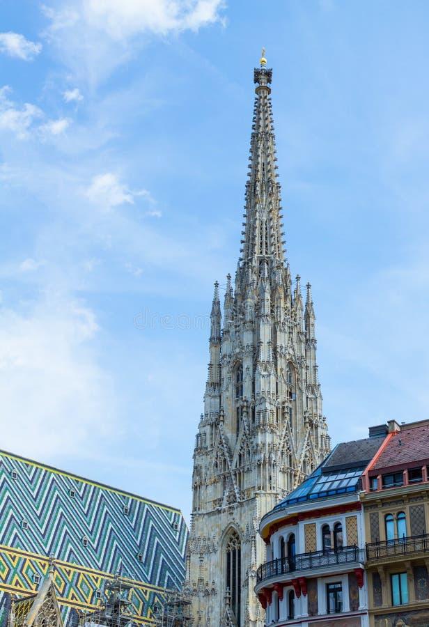 圣斯德望` s大教堂在维也纳 免版税库存图片