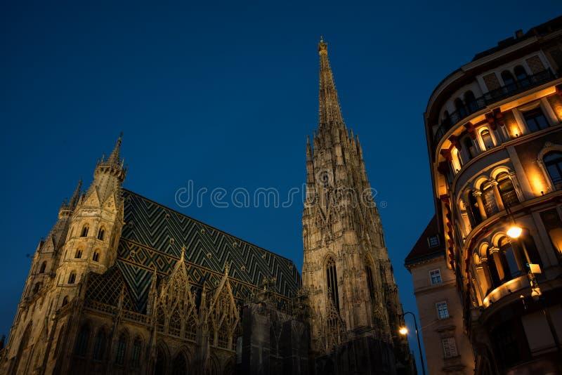 圣斯蒂芬的大教堂在晚上,维也纳 库存照片