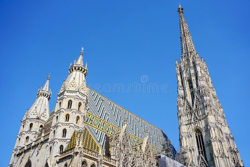 圣斯蒂芬` s大教堂在维也纳有蓝天背景,奥地利 免版税库存照片
