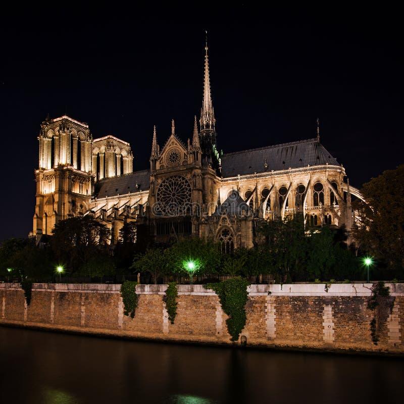 巴黎圣母院大教堂在晚上,法国 免版税图库摄影