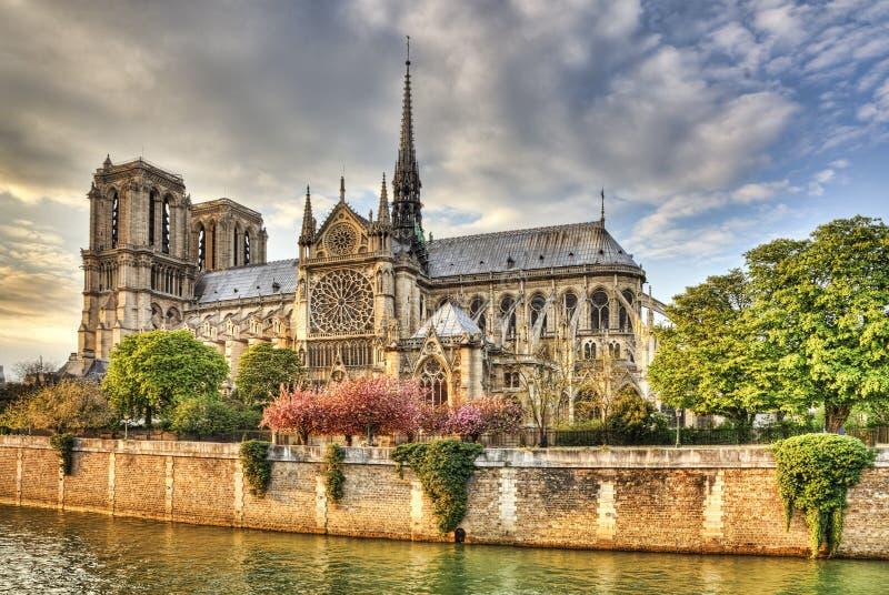 巴黎圣母院大教堂 免版税库存照片