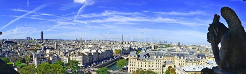 从巴黎圣母院屋顶的面貌古怪的人和城市景色  免版税图库摄影