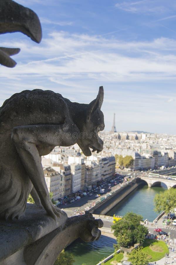 从巴黎圣母院屋顶的面貌古怪的人和城市景色  免版税库存照片