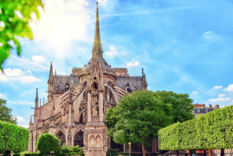 巴黎圣母院主教的座位 库存照片