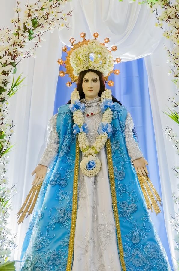 圣洁玛丽贞女 库存照片