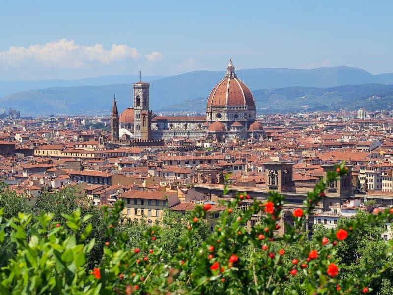 圣玛丽亚del菲奥雷,佛罗伦萨,意大利 库存照片