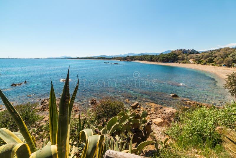 圣玛丽亚Navarrese海滩的蓝色海 免版税库存图片