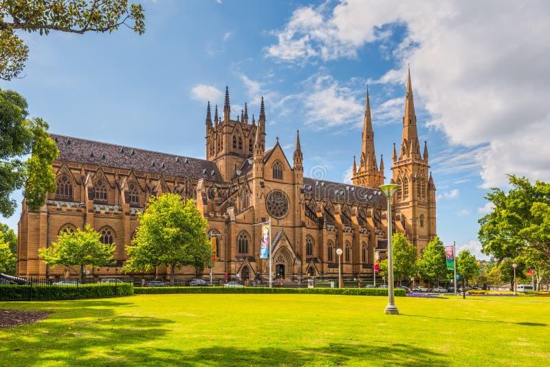 圣玛丽的大教堂,悉尼 库存图片