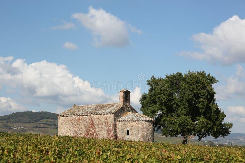 圣皮埃尔教堂在有Mont的Brouilly博若莱红葡萄酒 免版税库存图片