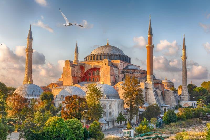 圣索菲亚教堂在土耳其伊斯坦布尔,阳光灿烂 免版税库存照片