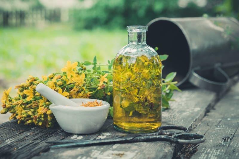 圣约翰斯麦芽酒开花,油或注入透明瓶,在木桌上的灰浆户外 免版税库存图片
