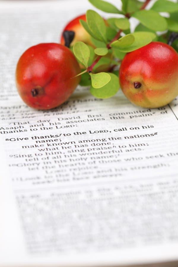圣经感恩 库存照片