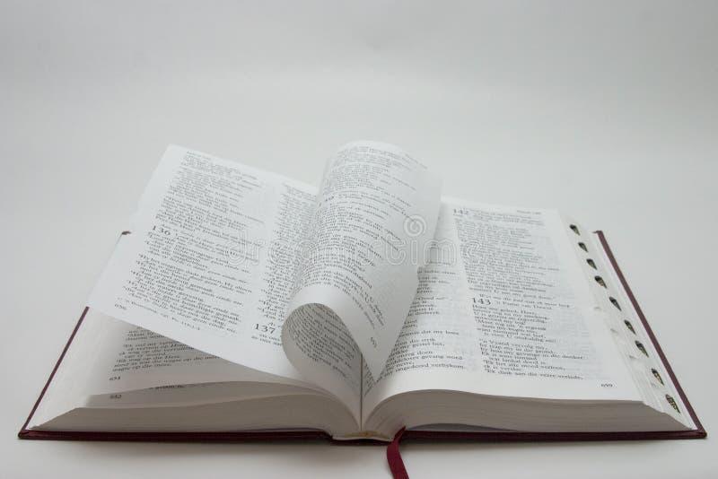 圣经页 库存照片
