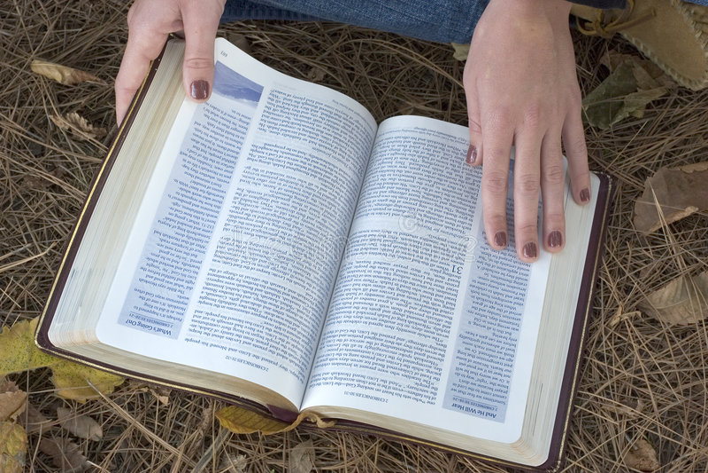 圣经 库存照片