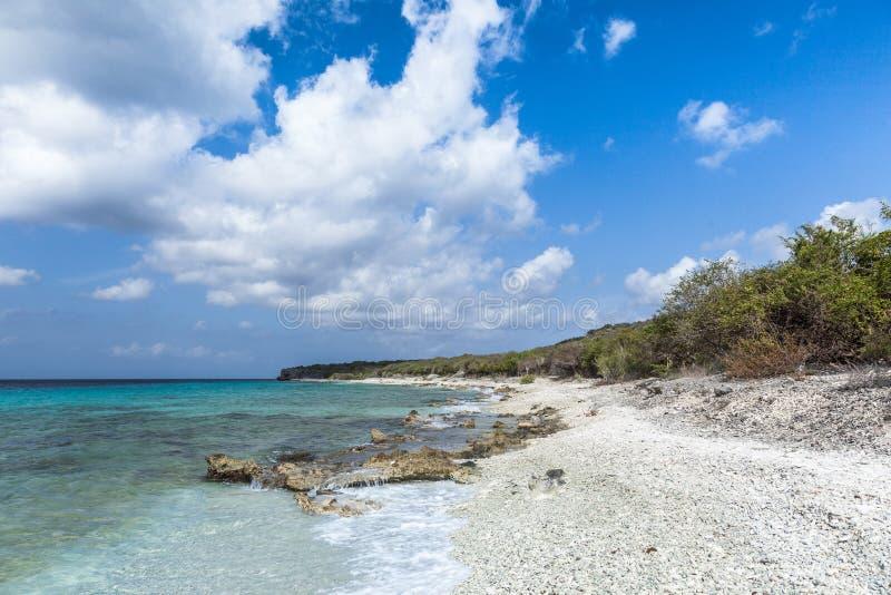 圣胡安一个石海滩 免版税图库摄影