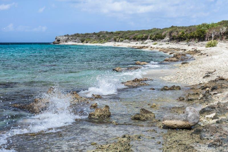 圣胡安一个石海滩 免版税库存图片