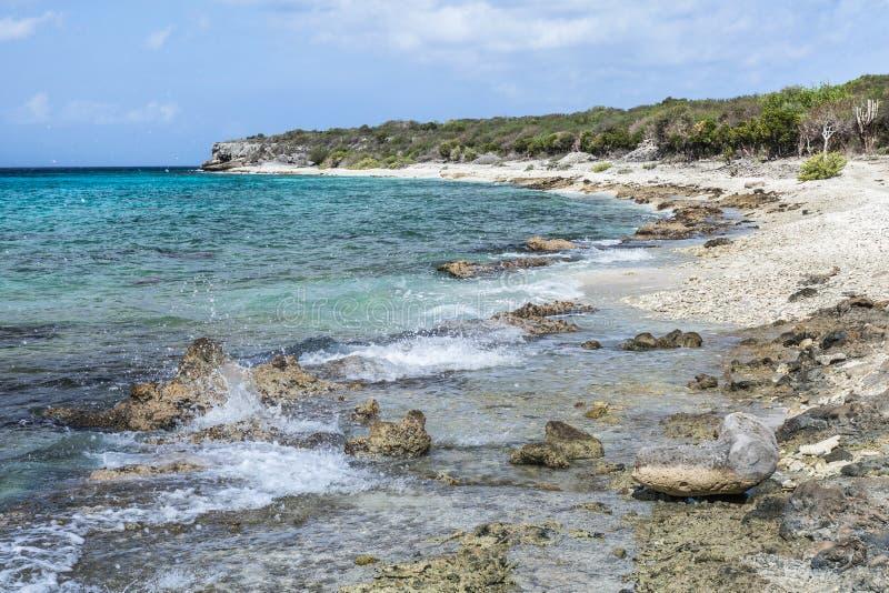 圣胡安一个遥远的石海滩 库存图片