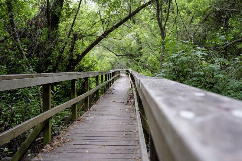 圣西梅昂自然蜜饯的木板走道 库存照片