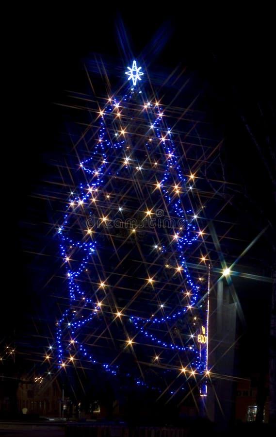 圣诞夜结构树 图库摄影