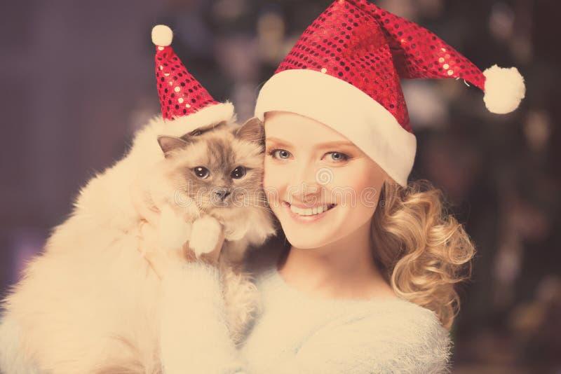 圣诞晚会,有猫的寒假妇女 女孩新年度 库存图片