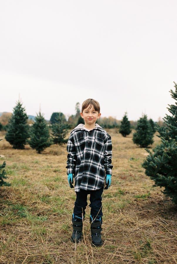 圣诞树农厂影片扫描与俄勒冈孩子 库存图片