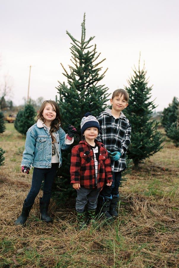 圣诞树农厂影片扫描与俄勒冈孩子 免版税库存照片