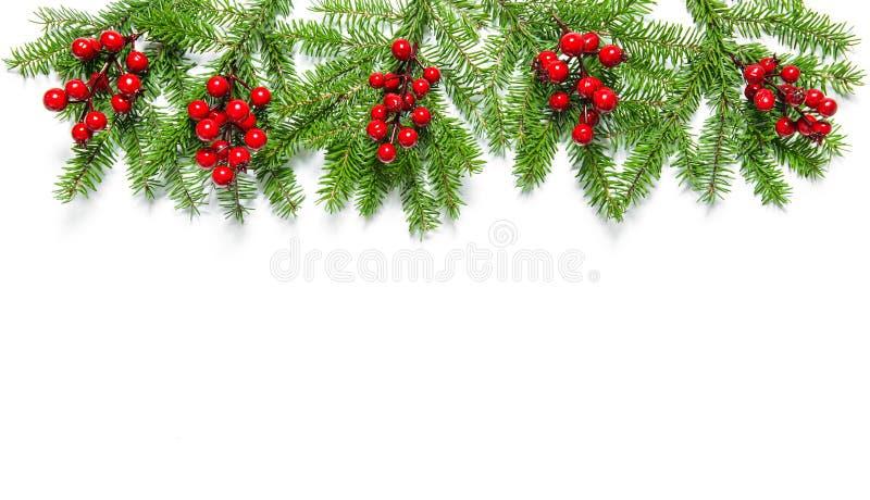 圣诞树分支假日装饰横幅 免版税库存图片
