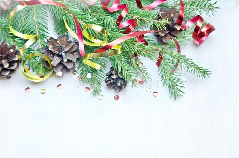 圣诞树分支背景和锥体和蛇纹石 图库摄影