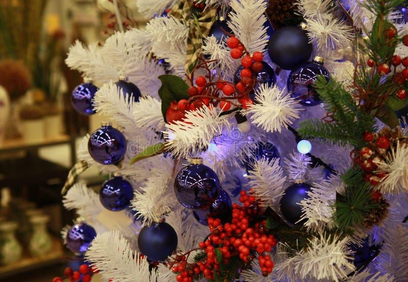 圣诞树分支背景 免版税图库摄影
