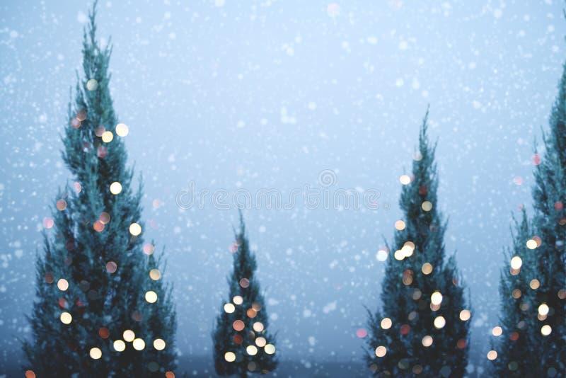 圣诞树和光bokeh与降雪在天空背景在冬天 图库摄影
