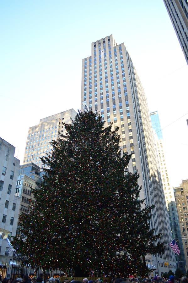 圣诞树在岩石樵夫中心 图库摄影