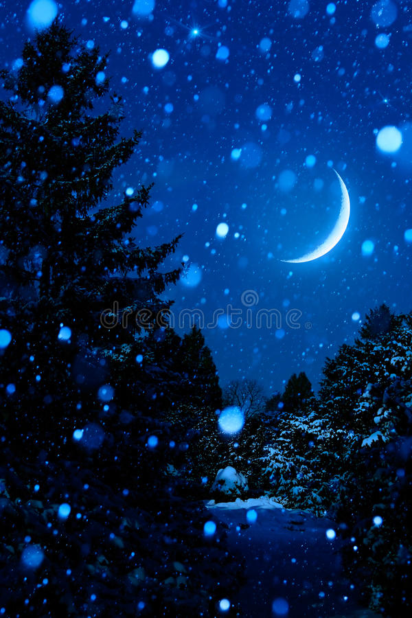 Download 圣诞树在户外晚上与月亮 库存照片. 图片 包括有 宴餐, 活动, 蓝色, 设计, 星形, 午夜, 结构树 - 62537708