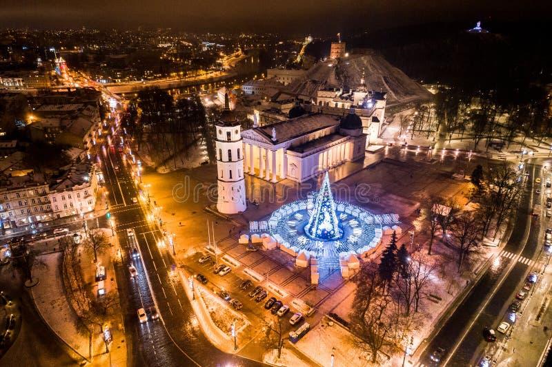 圣诞树在维尔纽斯,立陶宛 一最好和beauti 免版税图库摄影