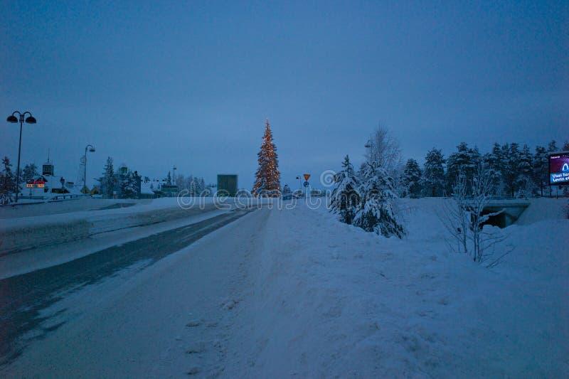 圣诞树在莱维,芬兰中 库存照片