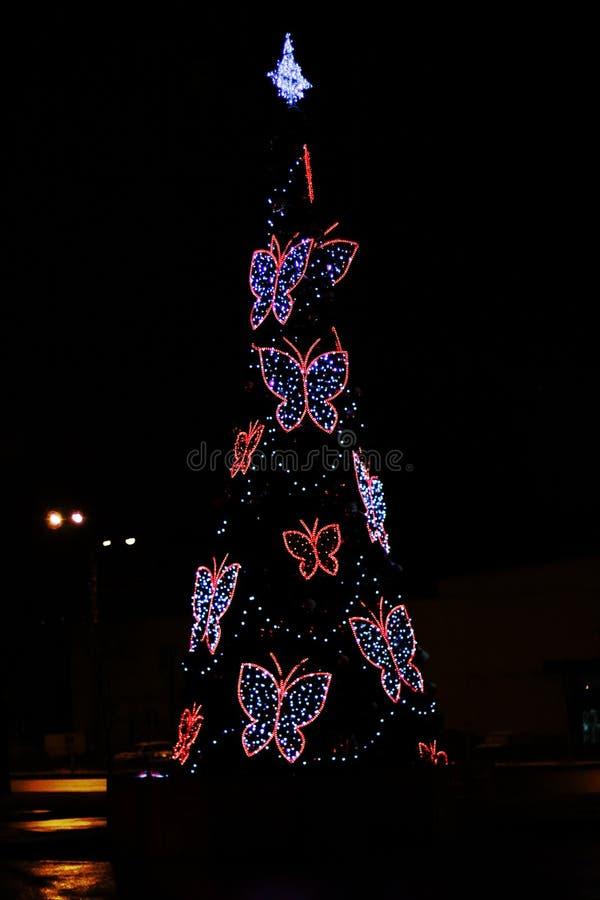 圣诞树的图象 免版税图库摄影