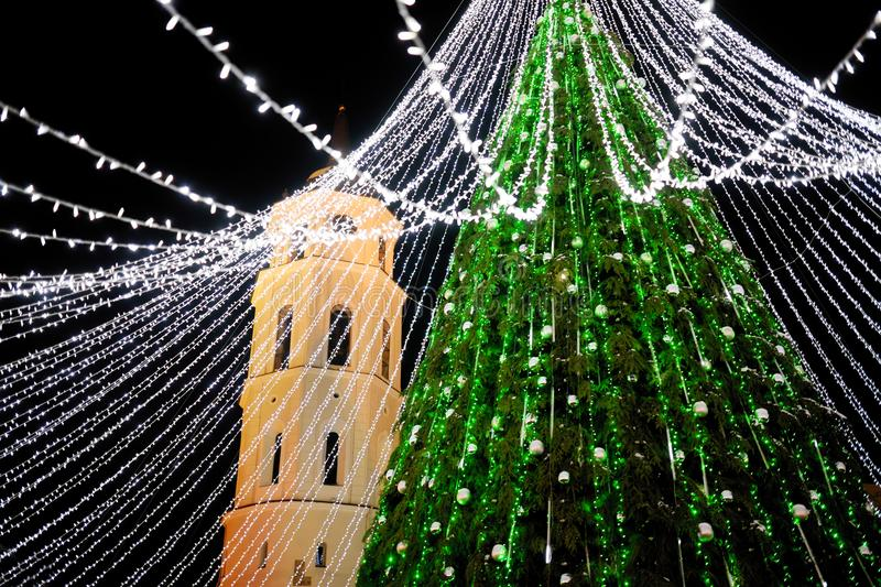 圣诞树的夜视图在维尔纽斯,立陶宛 庆祝Xmas假日在波罗的海国家 免版税库存照片