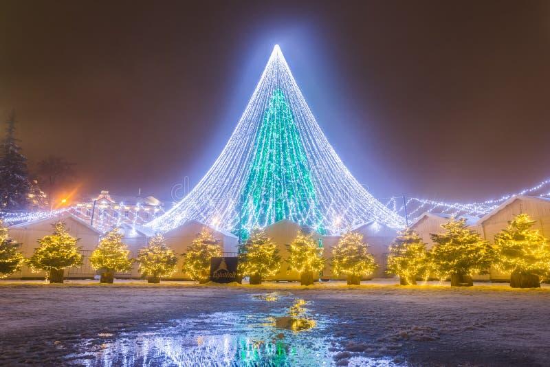 圣诞树的夜视图在维尔纽斯,立陶宛 免版税库存照片