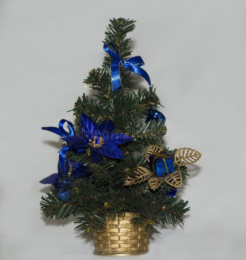 圣诞树,对象射击 免版税库存照片