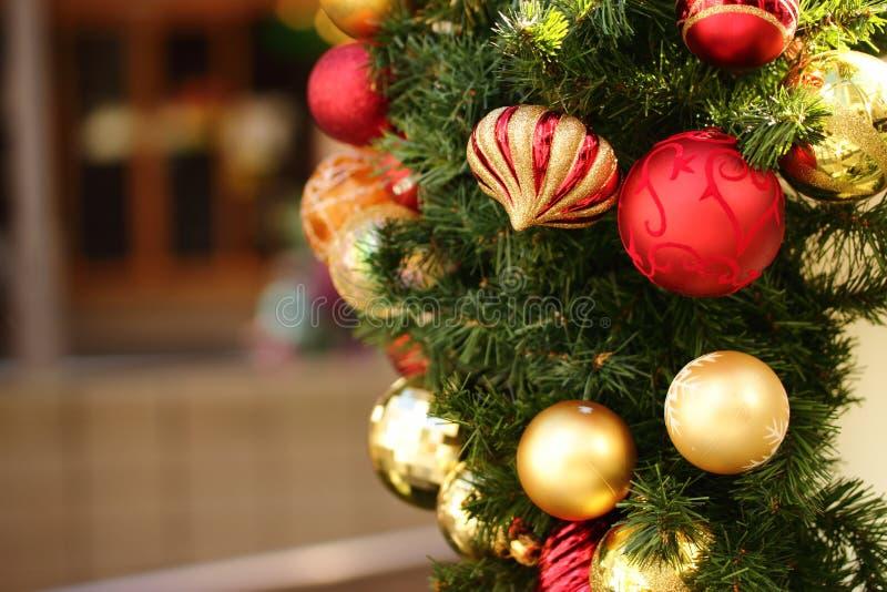 4圣诞树 库存图片