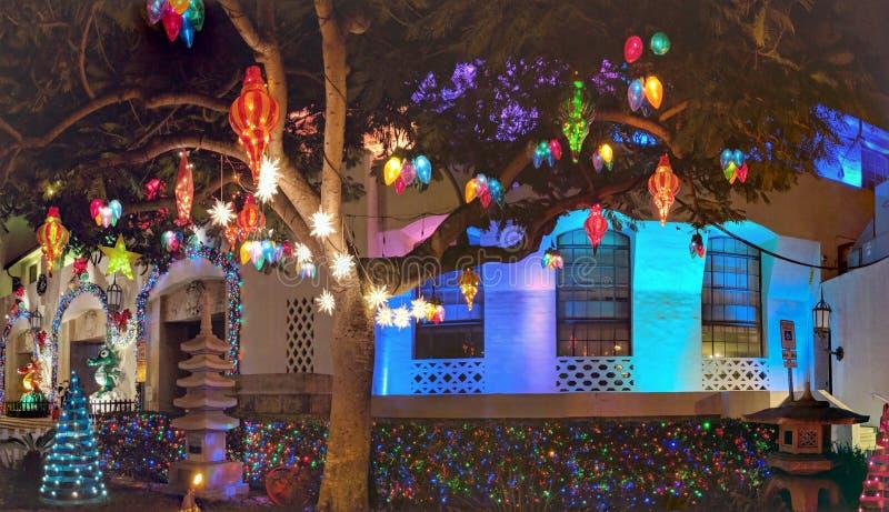 圣诞灯从在硬朗的檀香山前面的树垂悬 免版税库存图片