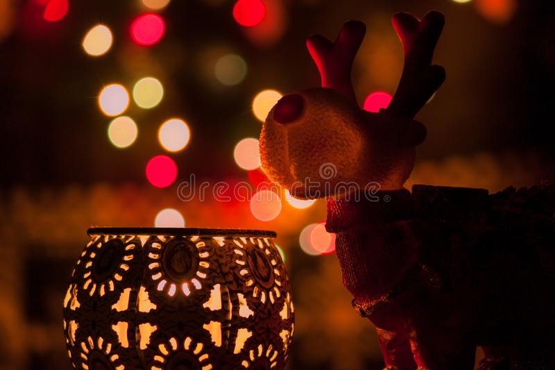 圣诞灯和驯鹿 库存照片