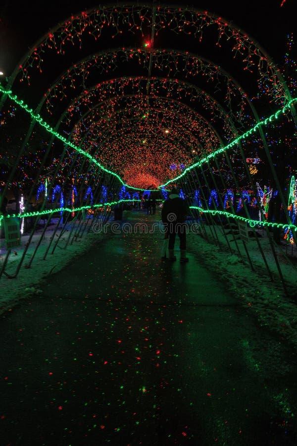 圣诞灯在德卢斯,在冬天季节期间的明尼苏达在苏必利尔湖岸 免版税图库摄影