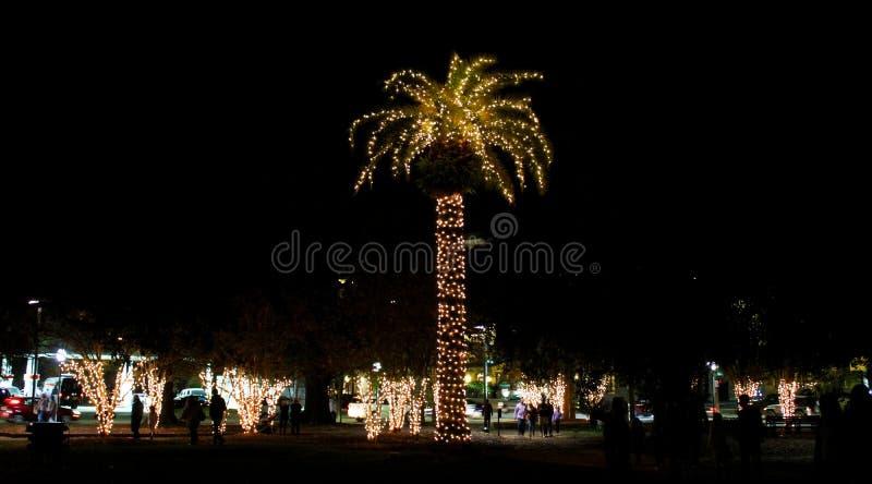 圣诞灯在查尔斯顿,南卡罗来纳装饰马里广场 免版税图库摄影