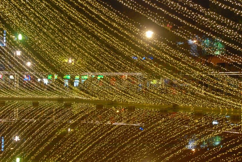 圣诞灯,湖反射 库存图片