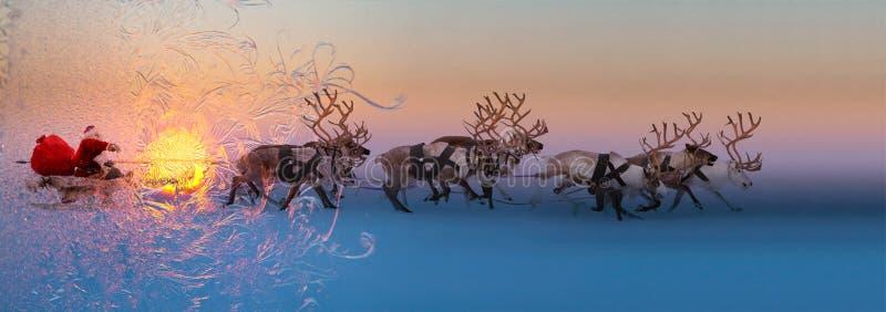 Download 圣诞老人在鹿雪橇坐 库存图片. 图片 包括有 年长, antioch, 运行, 服装, 庆祝, 赛跑, 有角 - 80804215