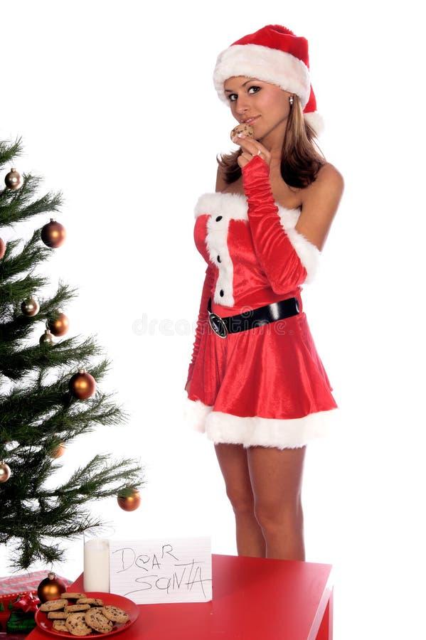 圣诞老人女士 库存图片